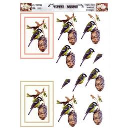5051 Fugle
