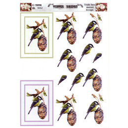 5052 Fugle