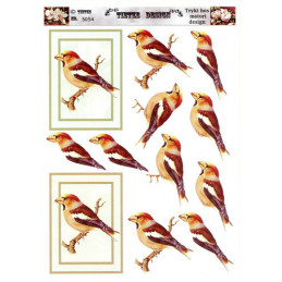 5054 Fugle