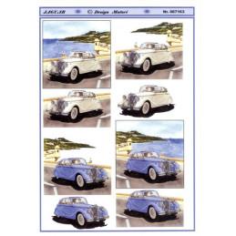 067163 Biler Jaguar