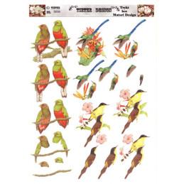 5059 fugle