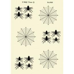 57153 Edderkop