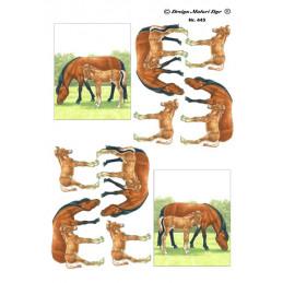 445 Matori Dyr Heste