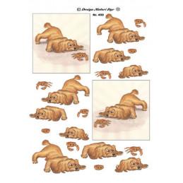 450 Matori Dyr Hund- krabbe