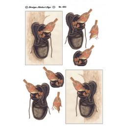 453 Matori dyr fugl i sko