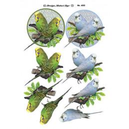 455 Matori dyr fugle