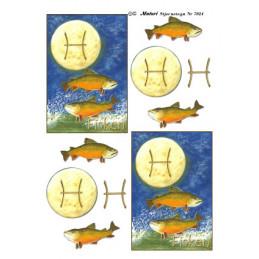 7024 Stjernetegn Fisken