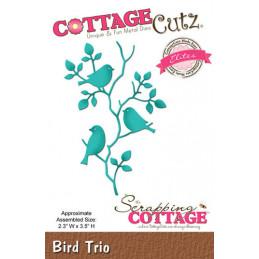 CCE-411 Bird trio