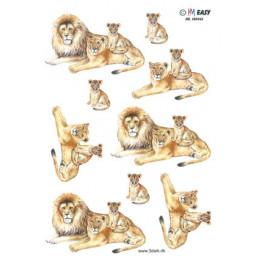 180942 EASY HM Løver